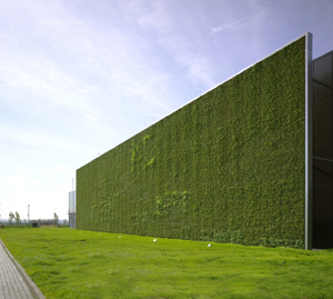 Citi&#8217;s Frankfurt data center incorporates environmentally friendly features such as this living wall, which helps reduce the facility&#8217;s ecological impact.