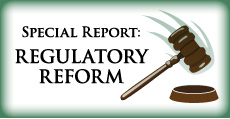 Special Report: Regulatory Reform