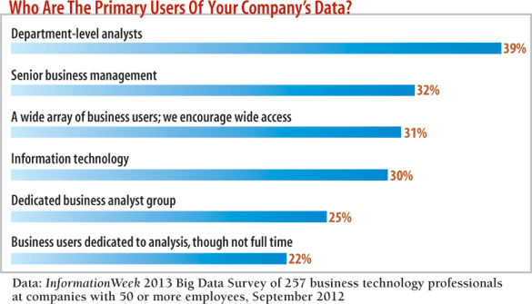 chart: Who are the primary users of your company's data?