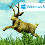 Windows 8 Jackalope