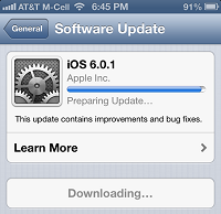 iOS 6.0.1 Downloading