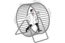 doctor hamster wheel