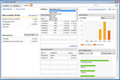 QuickBooks 2011 Company Snapshot