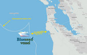 Blueseed's Offshore Startup Incubator