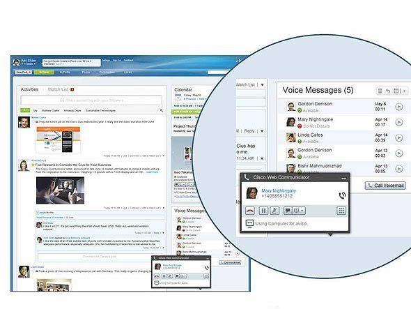 Enterprise Social Networks: A Guided Tour