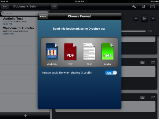 iPad Apps That Sync Audio With Notes: A Visual Tour