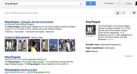 King Penguin: Google Search Results