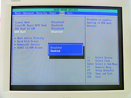 Some systems offer a number of choices relating to USB booting. Others offer only a simple enable/disable choice, such as the system shown here. Still other systems, especially older PCs, have no USB boot options available at all. (See the text for more info.)