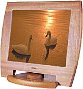 Swedx XV1-19AV-AS1 19-inch flat-panel monitor