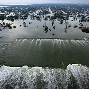 Stuck with a mess after the levees broke in New Orleans -- Photo by UPI