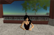 Anshe Chung, who claims to be the first real-world millionaire who made her fortune by doing business in Second Life. She made her fortune mainly by buying and selling land inside SL, and by designing and selling buildings on that land.
