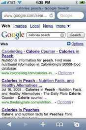 Use the iPhone's built-in Mobile Safari Web browser to look up calories on the go.