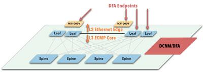 DFA Endpoints