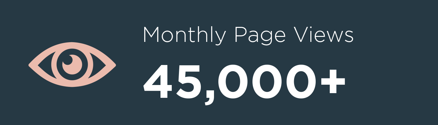 Monthly Page Views - 45,000+